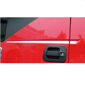 RVS appicatie voor deuren Iveco stralis cube